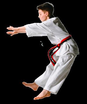 ado taekwondo